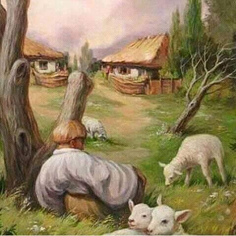 Cool Optical Illusion - Farmyard? Face?