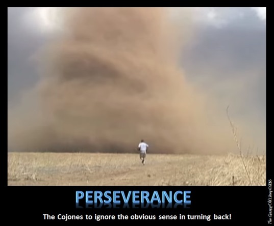 Perseverance - A Motivational Poster