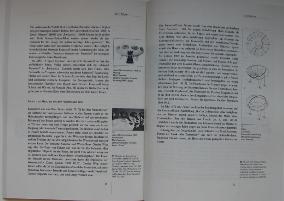 Kunststoff - Material Der Stunde?! Pages 71 & 72